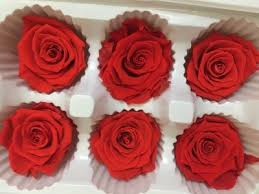 roses wholesale preserved flowers 6pcs box 5 6cm roses wholesale preserved