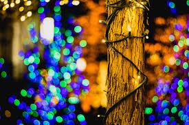 photo essay enjoy the spirit of christmas on temple square