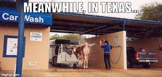 Meanwhile In Texas Meme - meanwhile in texas imgflip