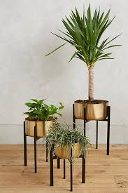 42 distinctive ornamental plant stands for indoor outside use