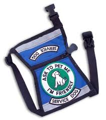 Comfort Dogs Certification Serviceworking Dog Vests Patches Training Harnesses Holidays Oo