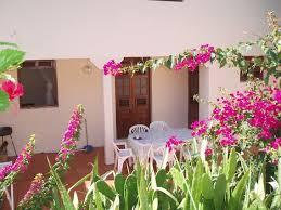 location de chambre chez particulier plante interieure fleurie pour location chambre chez particulier