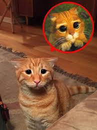 marty cat shrek puss boots impression charm