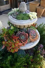 family garden ideas 47 succulent planting ideas with tutorials succulent garden
