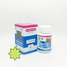 obat stamina pria purwoceng 60 kapsul hiu herbal sunnah