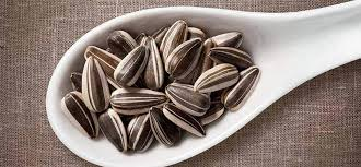 are sunflower seeds fattening or good for weight loss