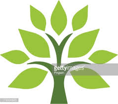 simple tree vector getty images