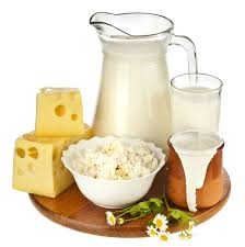 Lactose Intolerance Cottage Cheese by Gold Coast Naturopathy Leisha Novy Resources Dairy U0026 Lactose