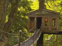 Treehouse Point Wa - best funky place to stay treehouse point king5 com