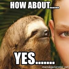 How About Yes Meme - how about yes whispering sloth meme generator