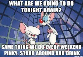 Pinky Meme - what are we going to do tonight pinky meme on imgur