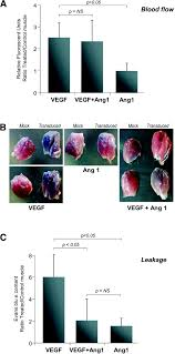 induction of functional neovascularization by combined vegf and