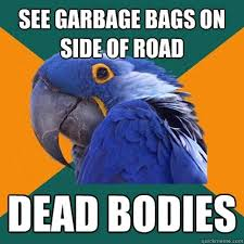 Paranoid Parrot Memes - the very best of the paranoid parrot meme