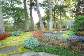 landscaping alderwood landscaping front yard landscaping ideas