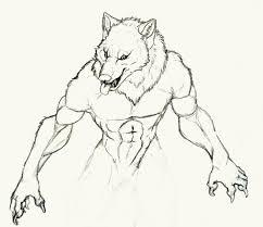 werewolf by w00f83 on deviantart