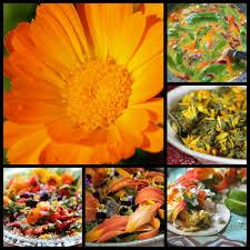 Calendula Flowers Calendula Edible Medicinal Flower Chestnut Of Herbal