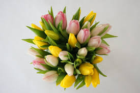 tulip arrangements tulip arrangements step by step how to make a tulip arrangement