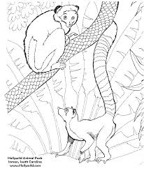 wild life scenes coloring pages coloring factory