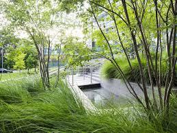 5173 best modern landscape images on pinterest landscaping