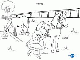 horses pictures print coloring
