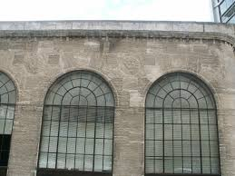 fossils in the architecture of washington dc a guide to