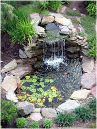 backyards impressive making a backyard pond making a outdoor