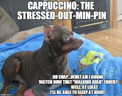 Stressed Out Memes - cappuccino the stressed out min pin imgflip