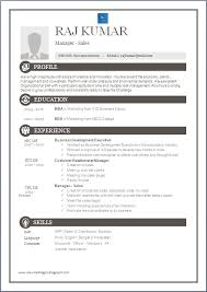 free sle resume in word format inspirational collection of resume for sales and marketing in word