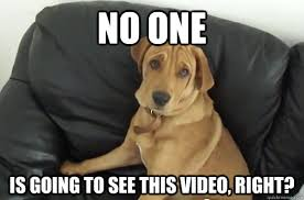 Casting Couch Meme - no one is going to see this video right casting couch dog