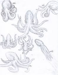 octopus sketches 1 by wolfgurl01 on deviantart