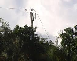 southwest power and light florida power and light power utility negligence