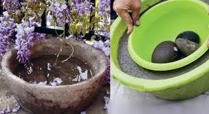 deco jardin a faire soi meme un grand pot rond en béton pour mon jardin prima