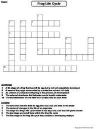 life cycle of a frog worksheet crossword puzzle by science spot