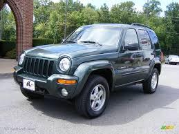 2002 jeep limited 2002 shale green metallic jeep liberty limited 4x4 17839485