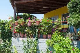 Flower Pot Arrangements For The Patio 16 Fresh Fun And Creative Patio Planter Ideas Garden Lovers Club
