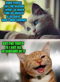 Happy Cat Meme - image tagged in sad happy cat memes funny friends imgflip