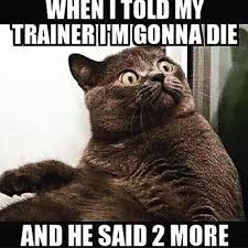 Gym Buddies Meme - 21 gym problems we all know to be true