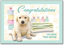 congratulations on new card veterinary congratulations cards smartpractice veterinary