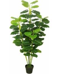 check out these bargains on vickerman artificial fresh