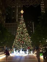 50 foot tree lighting in miami miami photo album topix