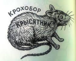 tightwad filcher u2013 rat tattoo i spyer