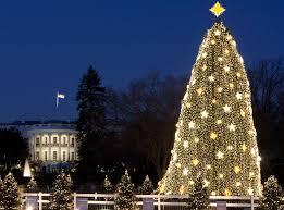 national tree lighting ceremony watch video live stream of the national christmas tree lighting