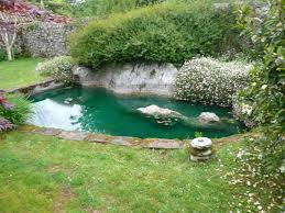Garden Pond Ideas Garden Pond Ideas Outdoor Furniture Choose Garden Pond