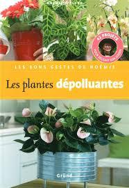 plantes dépolluantes chambre à coucher chambre plantes dépolluantes pour maison plante plantes pour votre