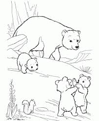 free printable polar bear coloring pages for kids in baby polar