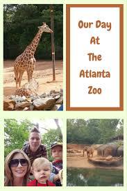zoo day nourishing my scholar
