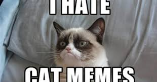 Grumpy Cat New Years Meme - grumpy cat new years meme 28 images happy new year memes 2017