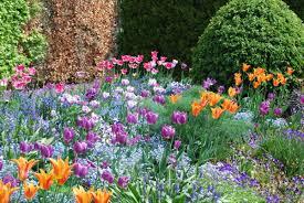 giverny monet u0027s flower garden
