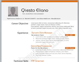 Simple Online Resume Top 10 Online Resume Templates For Web Designers