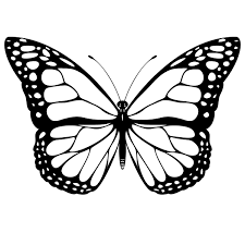 Butterfly Printable Coloring Pages free printable butterfly coloring pages for printable
